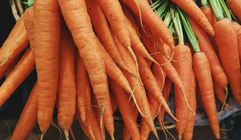 zanahorias organicas