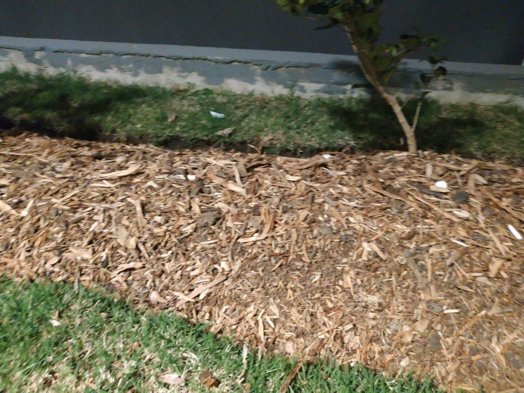 cama alta cubierta con mulch