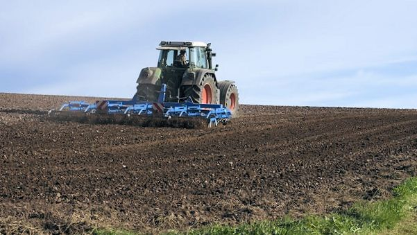 ejemplo de un buen suelo agricola