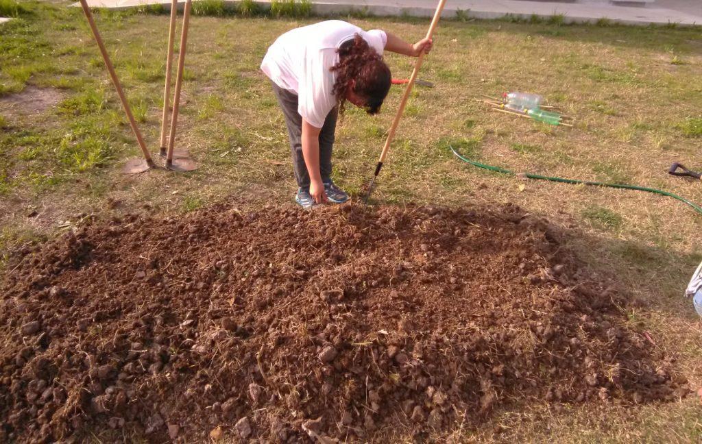 ejemplo suelo arcilloso poca materia organica