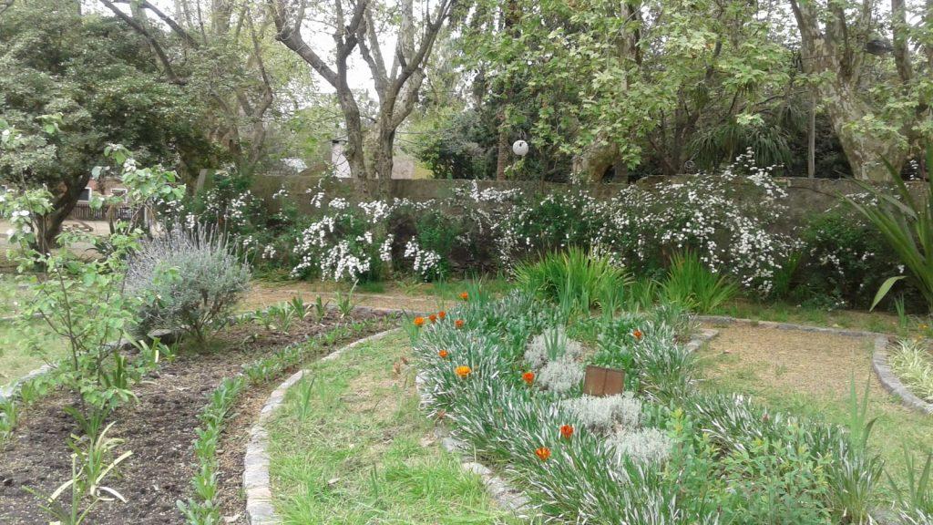Drenaje en jardin